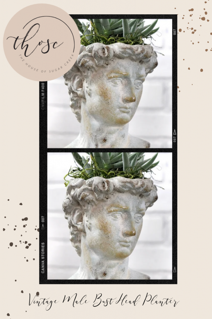 THOSC The Weekly Edit - Vintage-Inspired Male Bust Head Planter